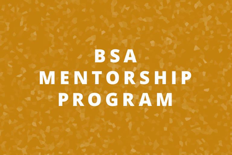 BSA Mentorship Program